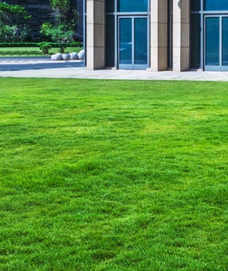 DeRoman Landscaping LLC Aeration