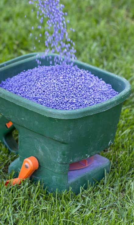 DeRoman Landscaping LLC  Lawn Fertilization