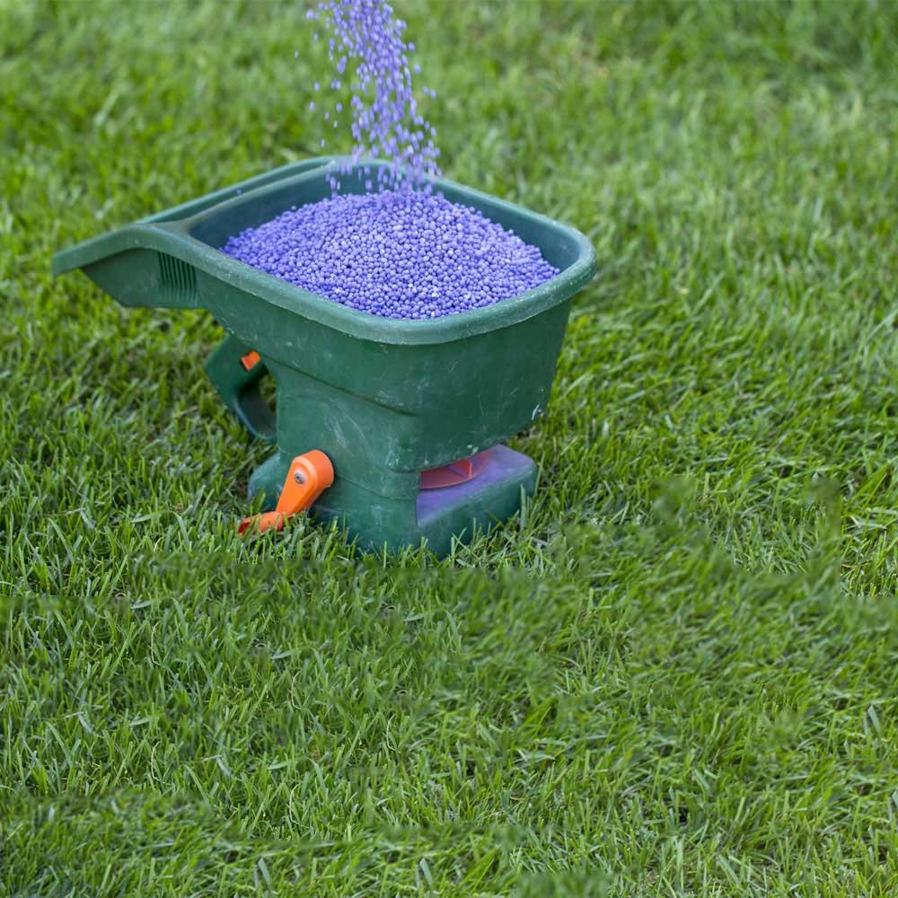 Lawn Fertilization Service