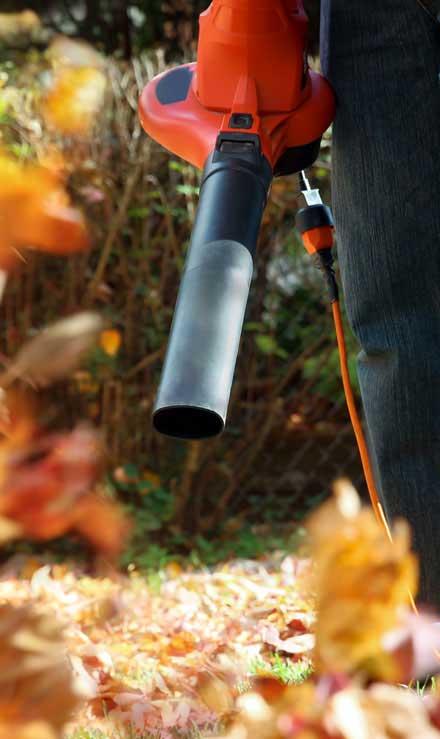 DeRoman Landscaping LLC Leaf Removal
