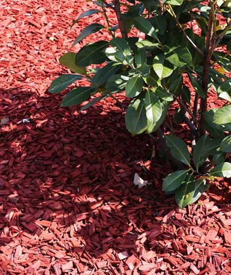 DeRoman Landscaping LLC Mulching