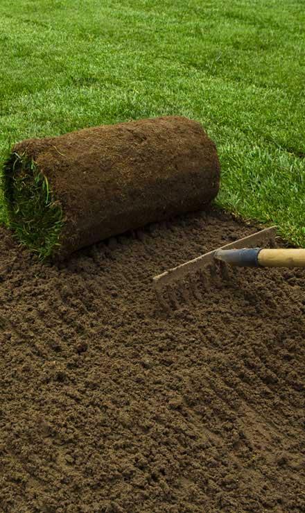 DeRoman Landscaping LLC Sod Installation