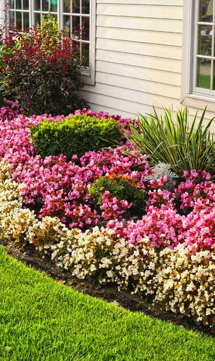 DeRoman Landscaping LLC Garden Design